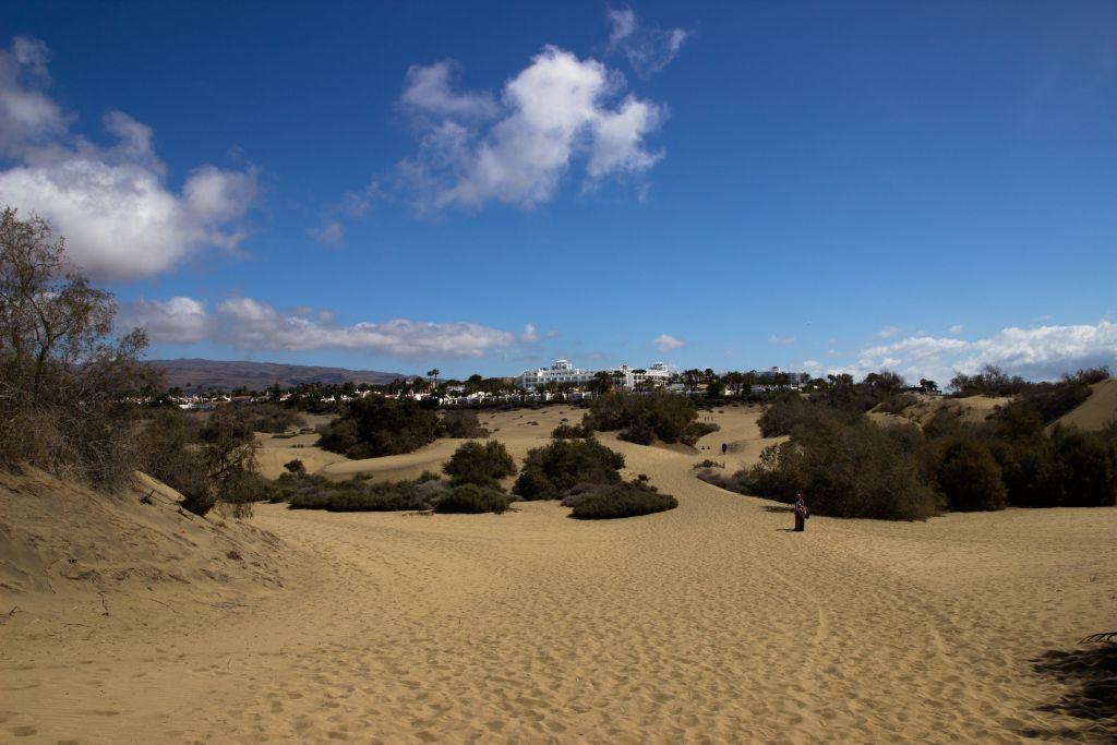 Briefe Nach Gran Canaria : Fotoserie spaziergang durch die dünen von maspalomas