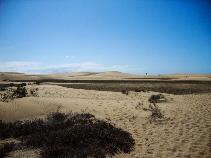 Sandfeld in den Münen