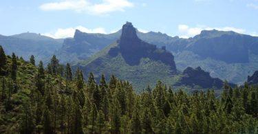 Kanarisches Hinterland - gran canaria